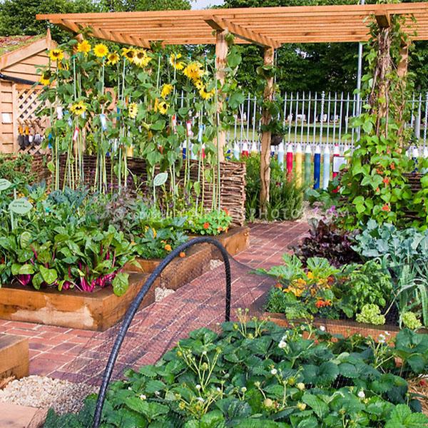600x600 vegetible garden
